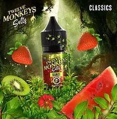 TwelveMonkeys-Salts- kanzi-30mL
